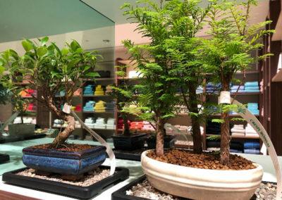 La Rinascente Store